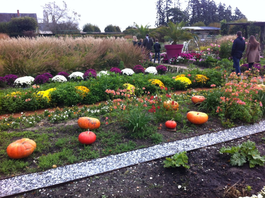 cheverny garden