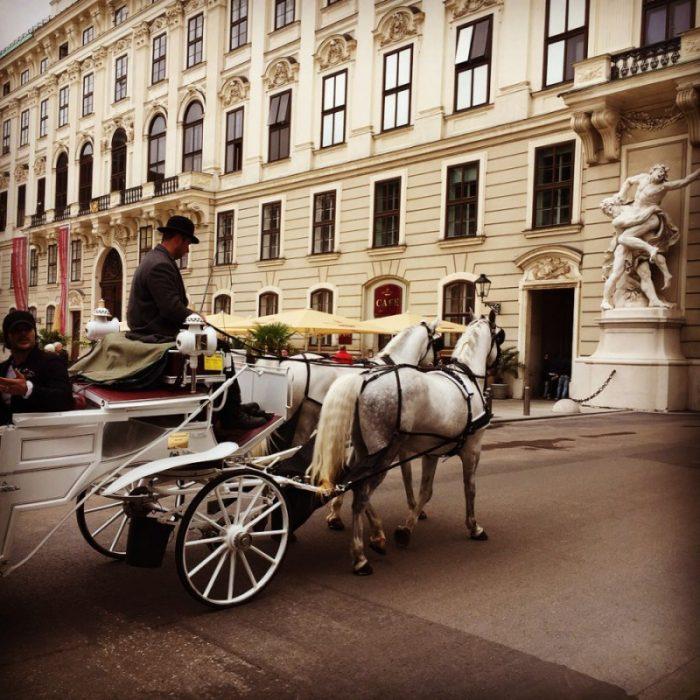 vienna horse carriage