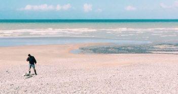 albatre coast